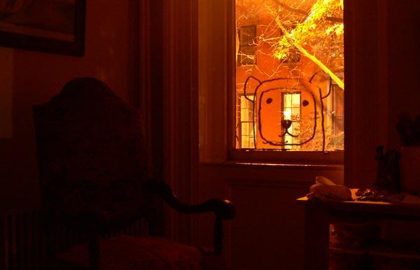 pbear_window.jpg